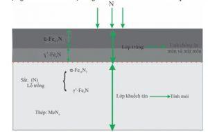 Cấu trúc và chức năng lớp thấm N thể khí điển hình